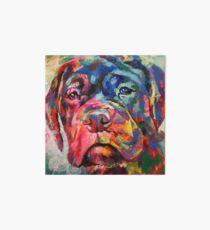 Bull Mastiff Puppy Art Board