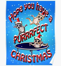hope you have a purrrfect christmas Poster