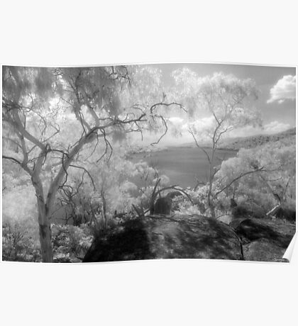 Lake Jindabyne from the singletrack - infrared Poster