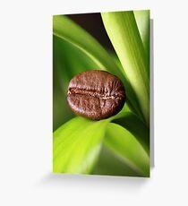 Kaffeebohne auf Bambus Greeting Card