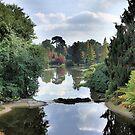Autumn Vista by duroo