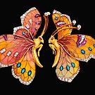 Jewel Butterflies by Walter Colvin