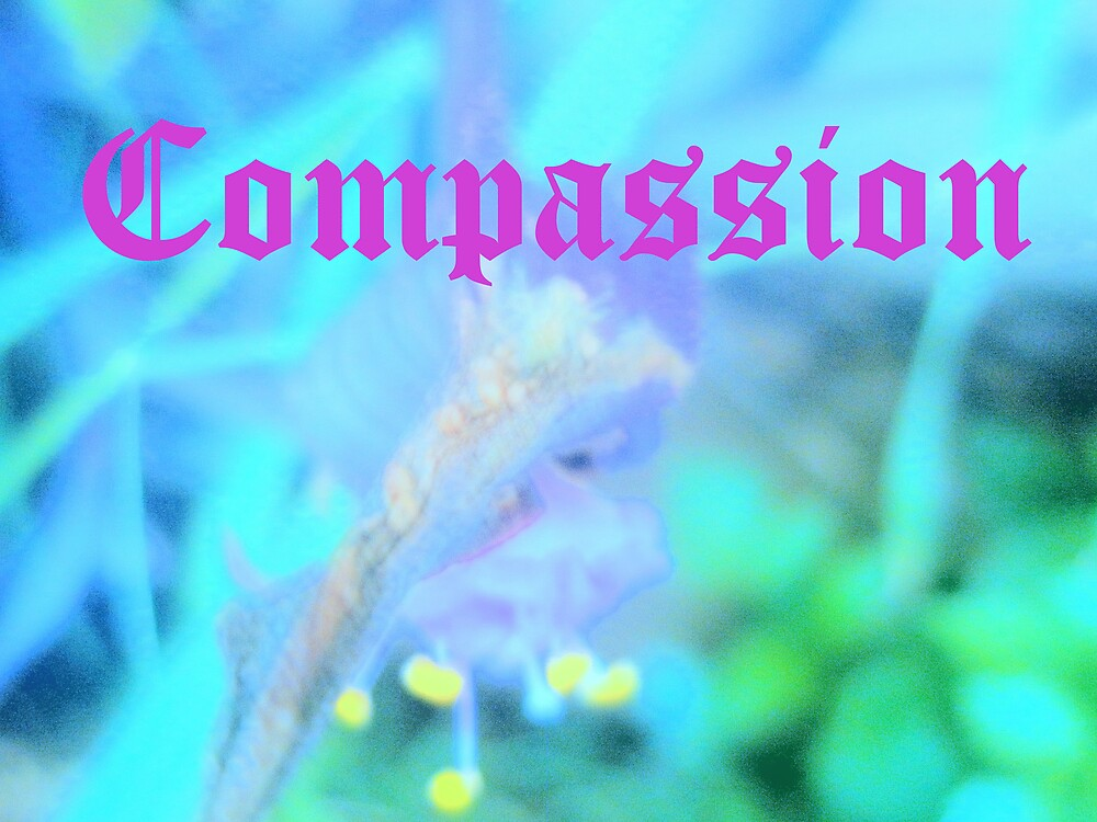 Compassion by meganlove