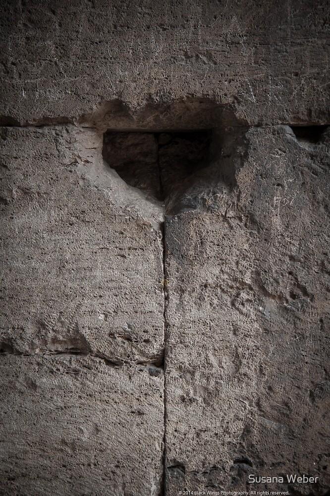 Gladiator's heart by Susana Weber