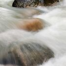 The Flow by Steven  Siow