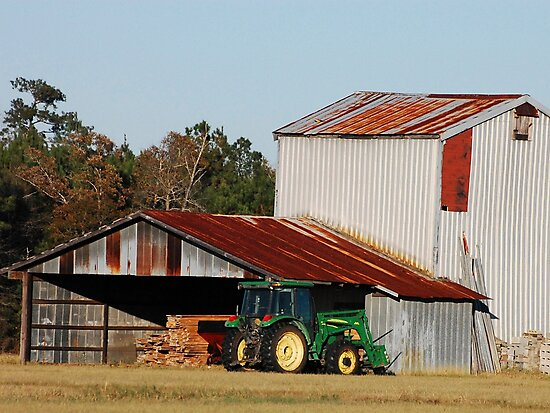 Harvest Time by TJ Baccari Photography