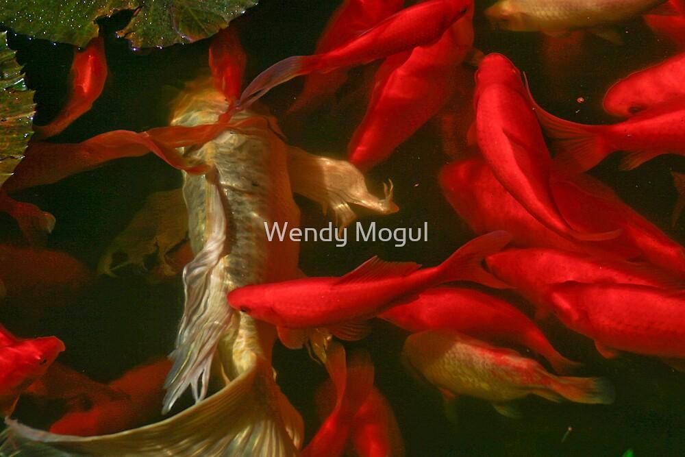 Koi Pond by Wendy Mogul