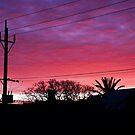 Sunrise over suburban Adelaide by rochelle