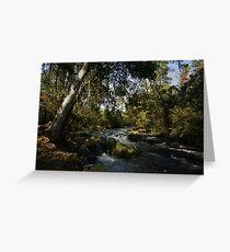 Acheron River Greeting Card
