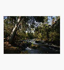 Acheron River Photographic Print
