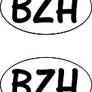 Brittany BZH Double Stickers by RiverbyNight