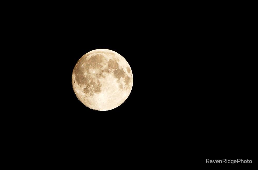 No Man On The Moon by RavenRidgePhoto