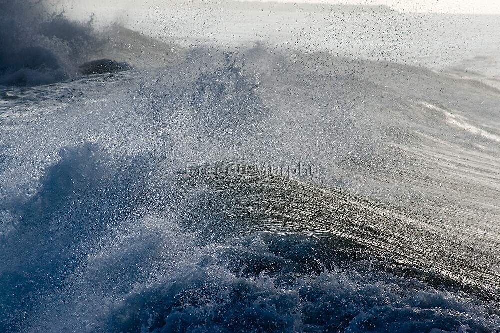 Brave Wave by Freddy Murphy