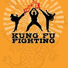 Kung Fu Fighting by Rossman72