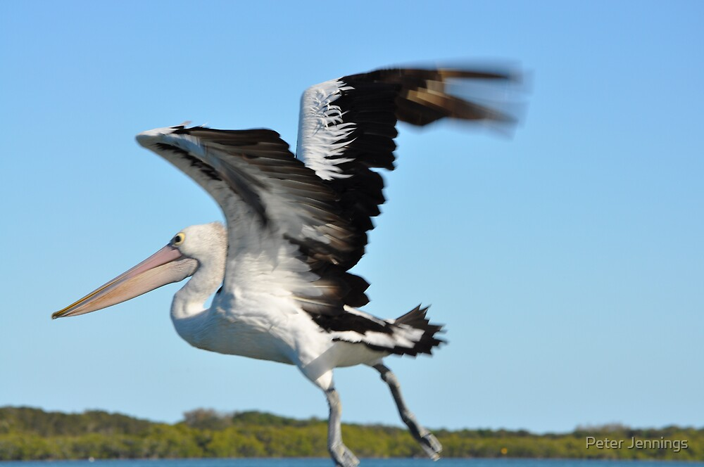 Lift Off by Peter Jennings