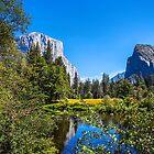 USA. California. Yosemite National Park. Landscape. by vadim19