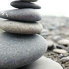 Stones by Shannan Edwards