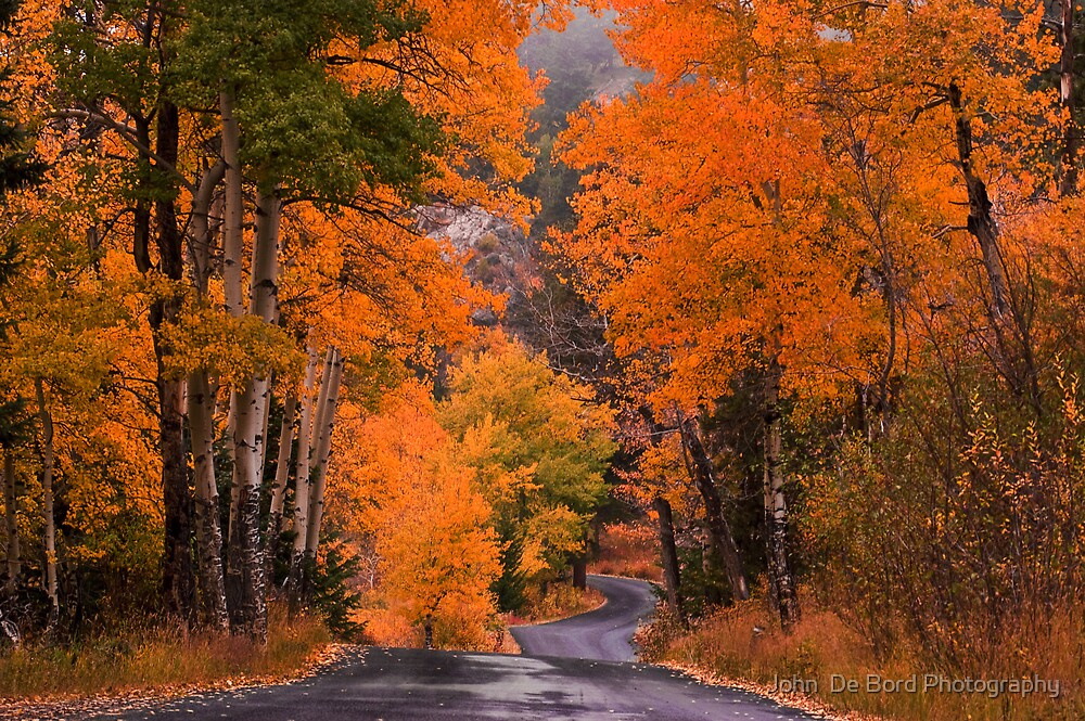 Autumn Travels by John  De Bord Photography