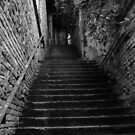 Stairs by hynek