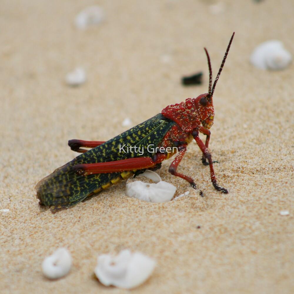 Dune Bug by JustineEB