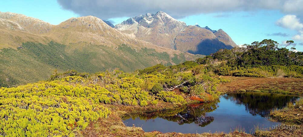 Towards the Greenstone Valley, Routeburn Track, New Zealand by aerdeyn