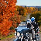 Autumn Ride by Debbie Stobbart