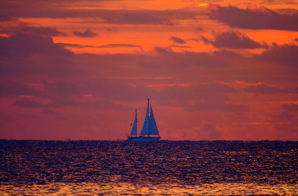 Sailboat by tomleeman