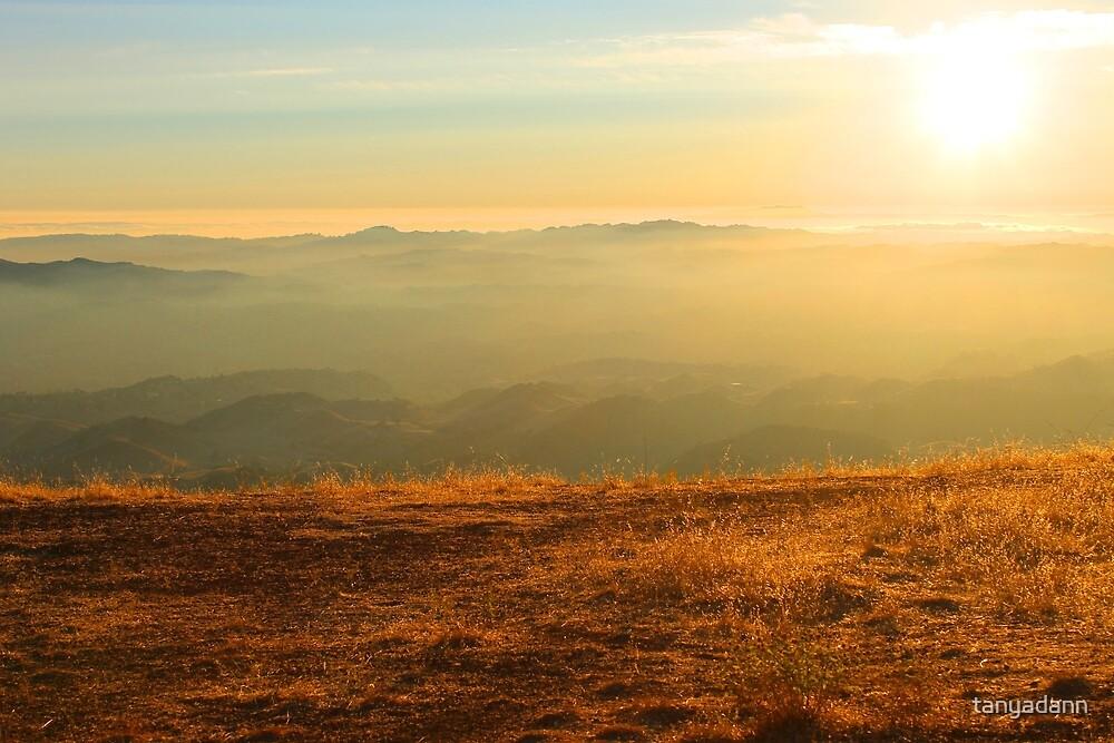 Mt Diablo sunset II by tanyadann