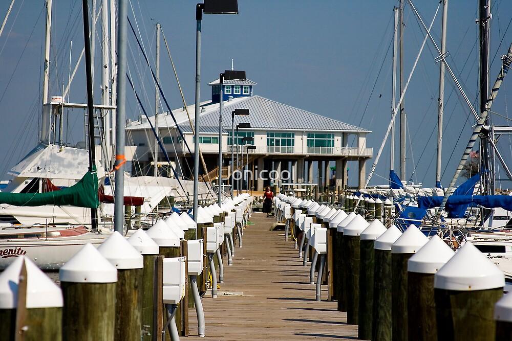 Pass Christian Harbor by Jonicool