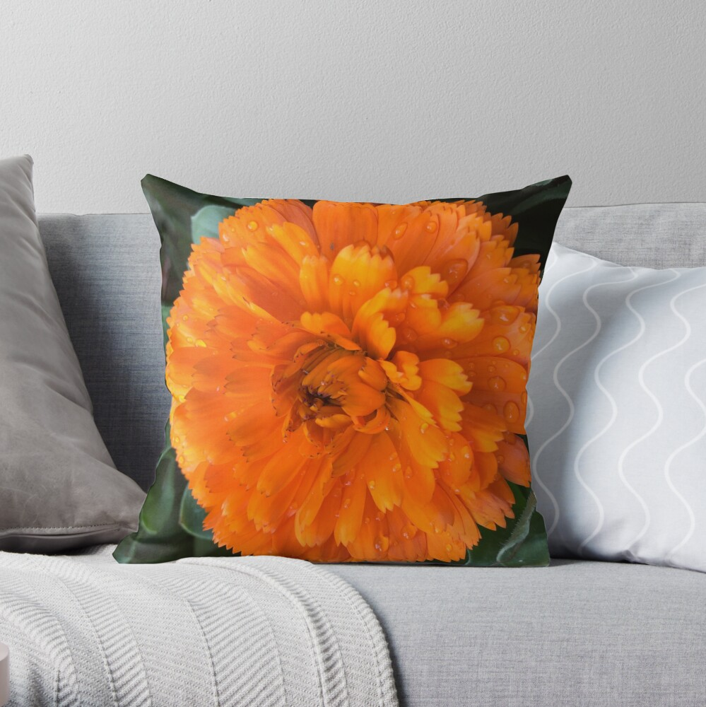 Marigold with Raindrops Throw Pillow