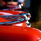 Hood Ornaments by Jonicool