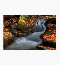Patterns of Light Photographic Print