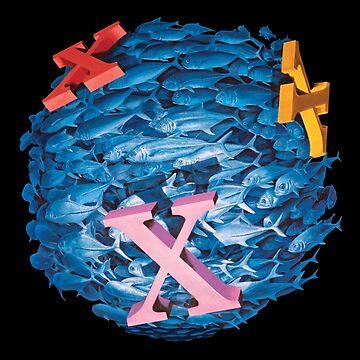 """""""X"""" markiert den Spot (für Karten) von jamesormiston"""