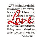 Love is Patient Love is Kind Corinthians by taiche