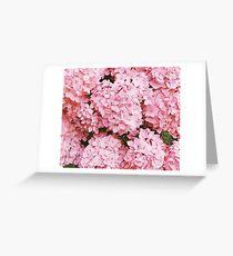 Pink Pattern  Greeting Card