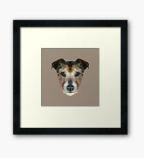 The Jack Russell Framed Print