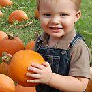 Little Pumpkin by Joel Hall