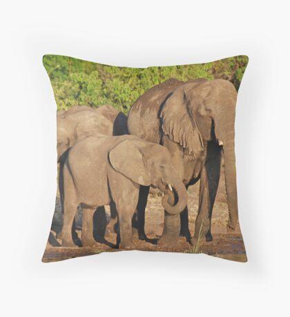 The Elephant Family, Chobe National Park, Botswana Throw Pillow