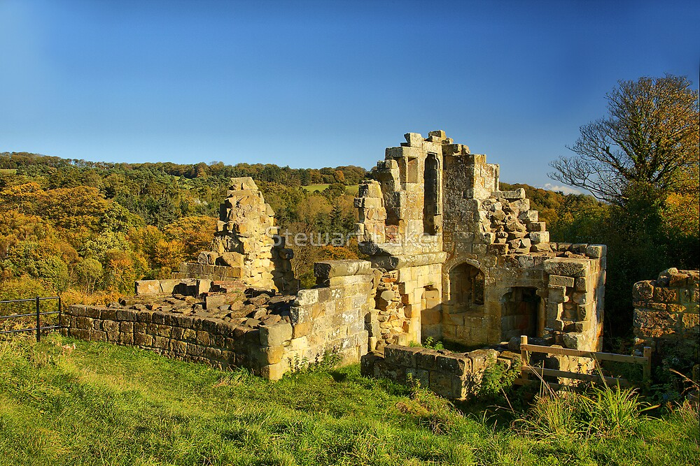 Mulgrave Old Castle 3 by Stewart Laker