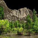 Yosemite dColoring 001 by Daniel H Chui