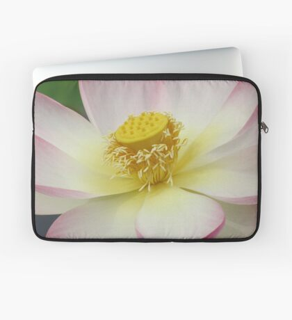 Lotus petals Laptop Sleeve