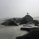 Timeless Beach by LUISPENA
