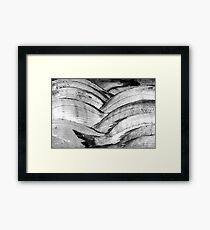 Fish scales. Framed Print
