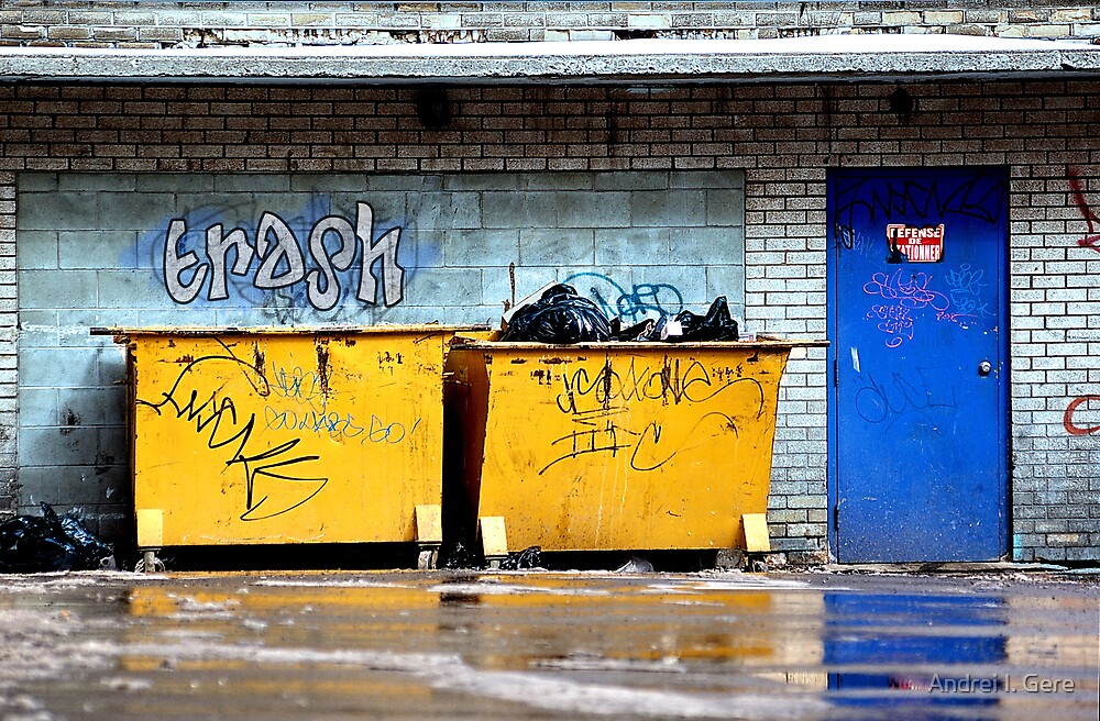 trash by Andrei I. Gere