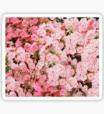 Lollipop Flower Pattern Sticker