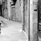 Barcelona - Street tease. by Jean-Luc Rollier