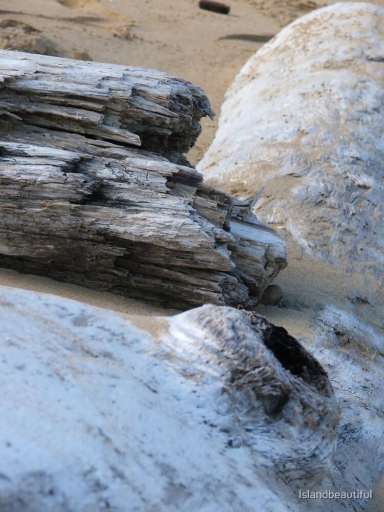 Driftwood by Islandbeautiful
