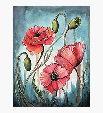 Poppy Flower Painting Photographic Print