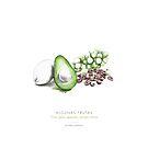 «Aguacate, uvas y pasas» de konsulandia
