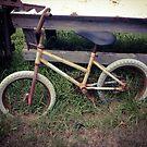 Bike at Mr. Sparrow's by Barbara Wyeth